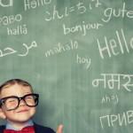 Jasa pembuatan website kursus bahasa